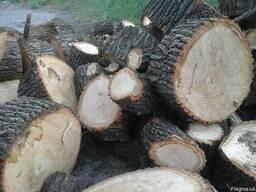 Колотые дрова дуба