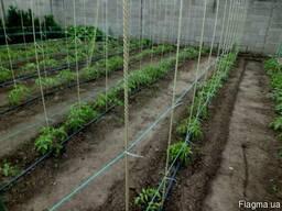 Колышки опоры для подвязки помидоров