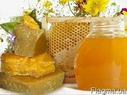 """Компания """"ГОЛД ХАНИ"""" производит закупку пчелиного мёда"""