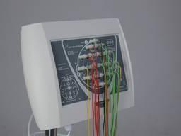 Компьютерный энцефалограф BrainTest
