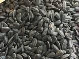 Кондитерская калиброванная семечка полсолнуха - фото 8