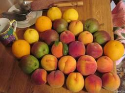 Конфитюр персик и апельсин