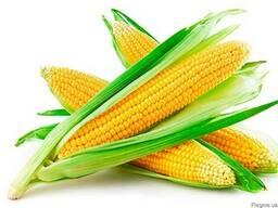Конкурент кукуруза купить, Конкурент цена в Украине