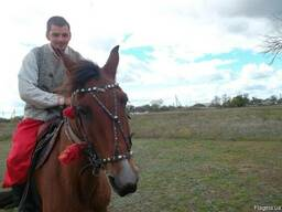 Конные прогулки на хуторе Галушковка!
