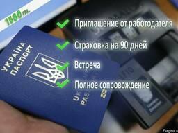 Консультация и помощь с документами для работы по безвизу