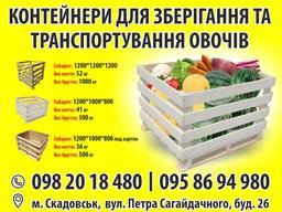 Контейнера для хранения и транспортировки овощей и ягод