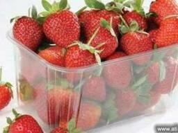 Контейнеры для ягод клубники, малины, голубики, смородины,