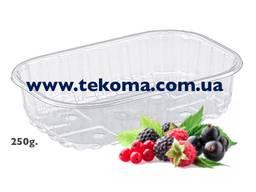 Контейнеры для ягод, тара для ягод, упаковка для ягод