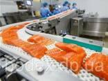 Конвейерные ленты для рыбной промышленности - фото 1