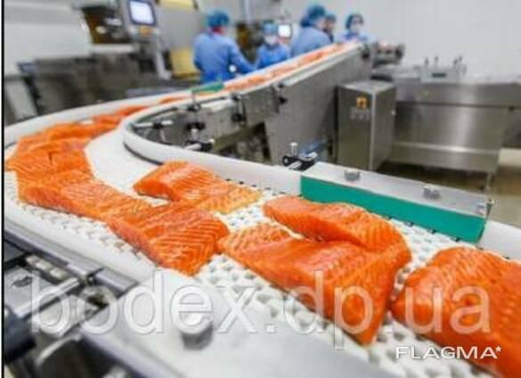 Конвейерные ленты для рыбной промышленности