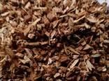 Кора дуба(дробленая) - фото 1