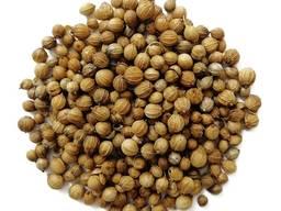 Кориандр молотый и зерно