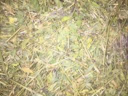 """Сено: """"Лечебные травы, люцерна"""", """"Разнотравье""""."""