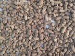 Кормові гранули для відгодівлі свиней - фото 1