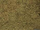 Ковровое покрытие Enia - фото 1