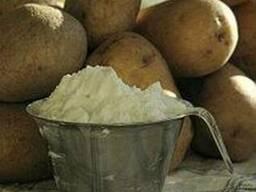 Крахмал картофельный г.Поречье Белорусь