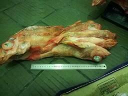 Красный окунь с/г с/м вес тушки 700гр
