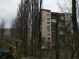 Кронирование деревьев Киев. Обрезка веток Киев.