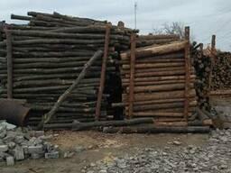 Кругляк хвойных и твердых пород древесины