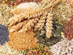 Крупа пшенична, ячмінна , ячмінна перлова власне виробництво