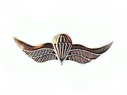 Крылья ВДВ (франчик, металл. )
