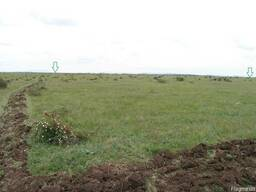 Крымская земля 12 ГА
