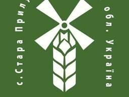 Мука кукурузная экструзионная