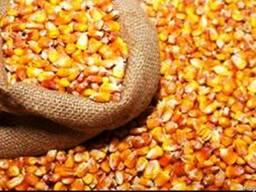 Дробарка ручна для кукурудзи, (Кукурузолущилка), металева . - фото 4