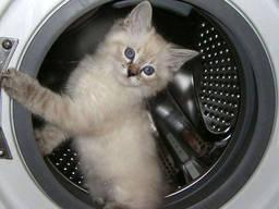 Купим стиральные машины