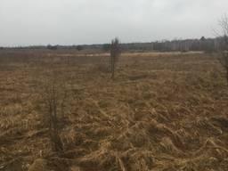 Купимо (візьмемо в оренду) земельна ділянка від 200 до 400 га.