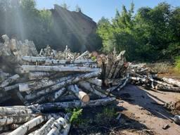 Купить дрова березы кругляк 1- 2-х метровки по Киеву и области