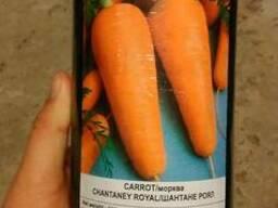 Купить семена моркови Griffaton Шантане Роял