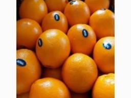 Куплю апельсин оптом.