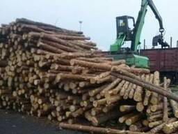 Куплю дорого дрова хвойних порід.