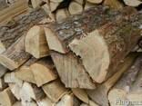 Куплю дрова колені або в кругляку