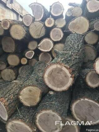 Куплю дрова метрівка