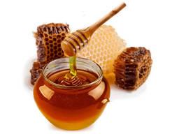 Куплю гречаний мед оптом АМЕДА ГРУП