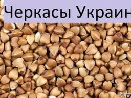 Куплю Гречку Черкасы Украина