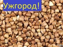Куплю Гречку Ужгород Украина
