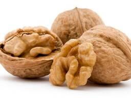 Куплю грецкий орех без кожуры
