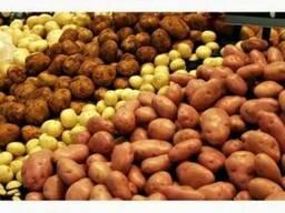Куплю картофель оптом от 20т