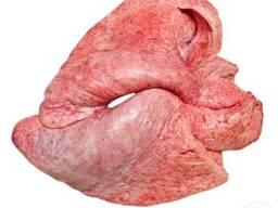Куплю легені яловичі заморозка