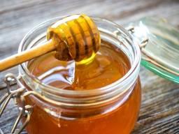Куплю майский мед оптом от 300 кг