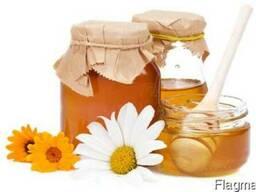 Куплю мед Подсолнуха