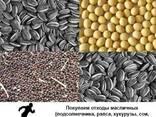 Куплю отходы масличных подсолнечника, рапса, кукурузы, сои - фото 1