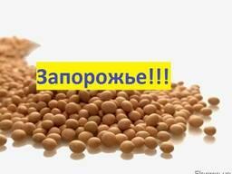 Куплю Сою Запорожье Украина
