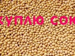 КУПЛЮ сою оптом постійно ГМО та не ГМО. Самовивіз. Дзвоніть ( соя )