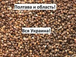 Куплю Гречку Полтава Украина