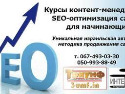 Курсы контент-менеджеров, SEO-оптимизация сайтов для начинаю