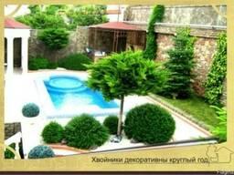 Ландшафтный дизайн в Севастополе